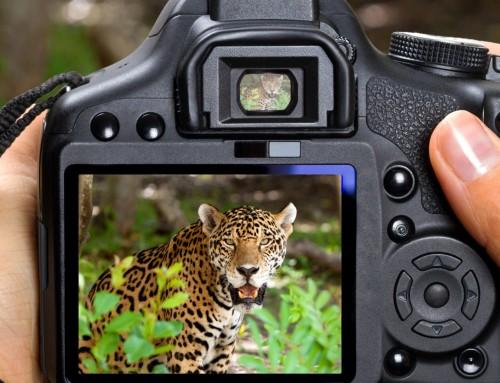 5 съвета да подобриш фотографията си
